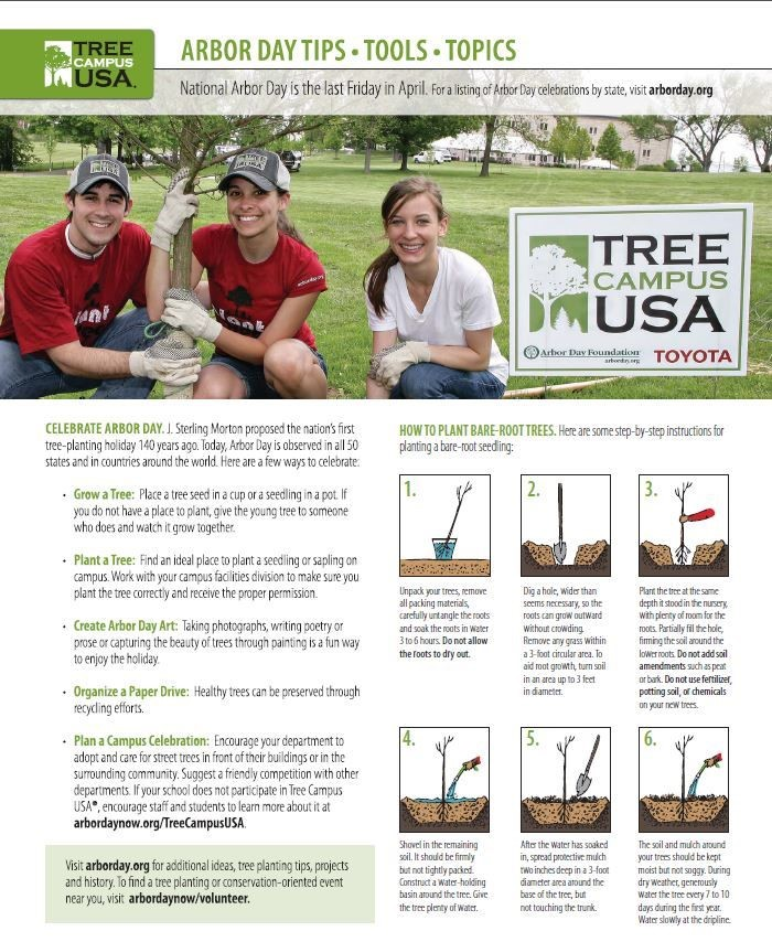 Arbor Day Tips